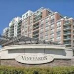 Vineyards - 350 Red Maple Road
